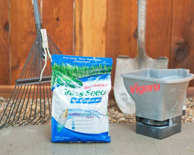planting grass seed tools